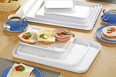 trays/plastic