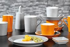 Geschirr Tric orange / grau